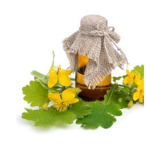 Мед и чистотел