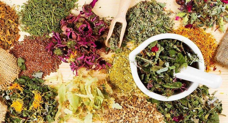 Лекарственные травы для приготовления медового сбитня от простатита