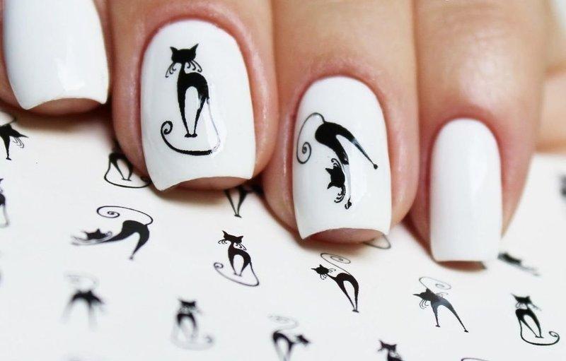 Белые ногти со слайдами котов