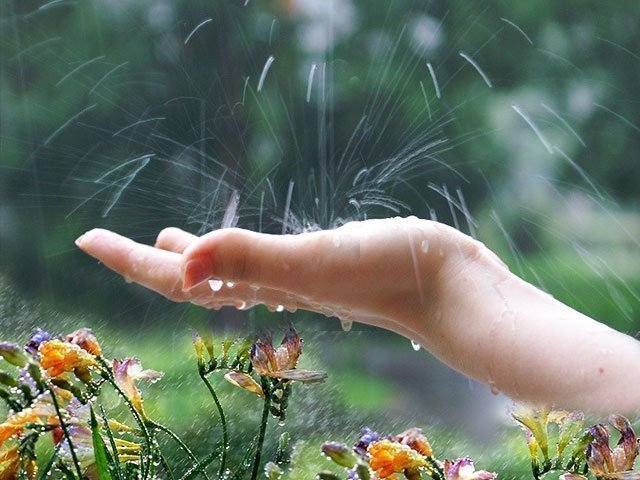Сонник к чему снится дождь на улице