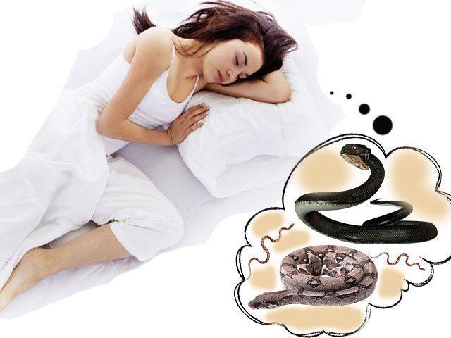 Сонник укусила Змея 😴 приснилась, к чему снится укусила Змея во сне видеть?