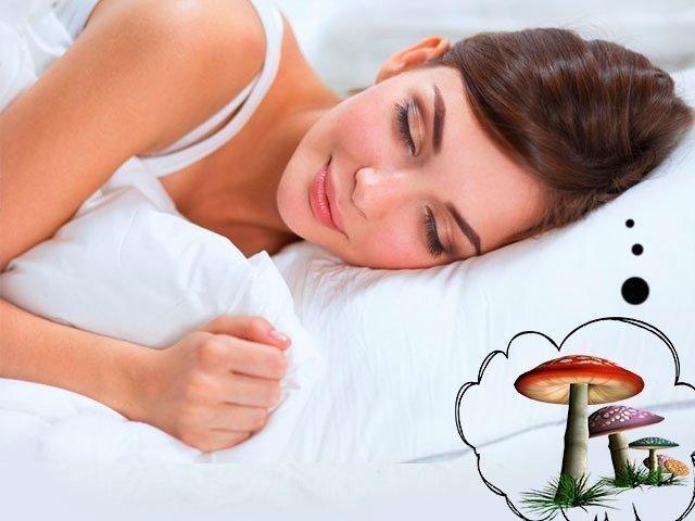 К чему снятся грибы женщине: собирать грибы, готовить грибы, есть грибы? Основные толкования — к чему снятся грибы женщине