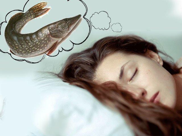 К чему снится щука - если снится щука женщине к чему это
