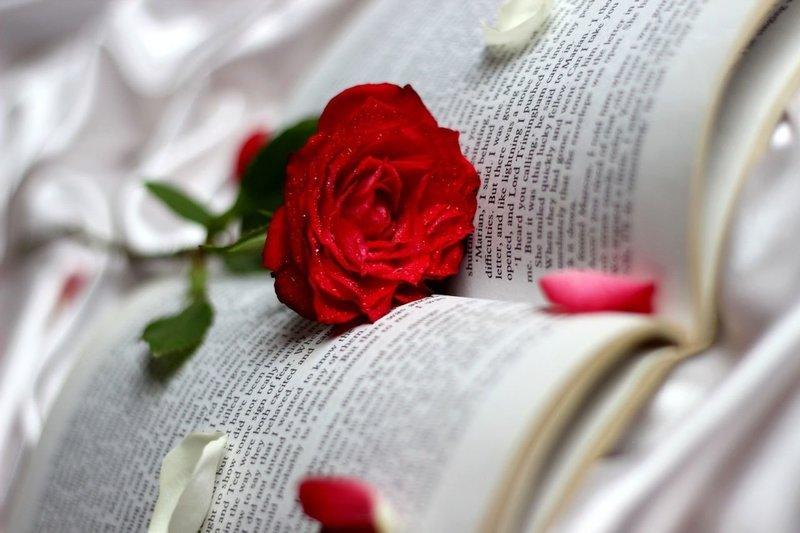 Роза по психоаналитическим сонникам