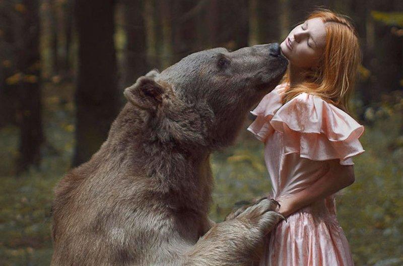 Действия человека во сне про медведя