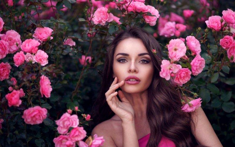Роза снится женщине