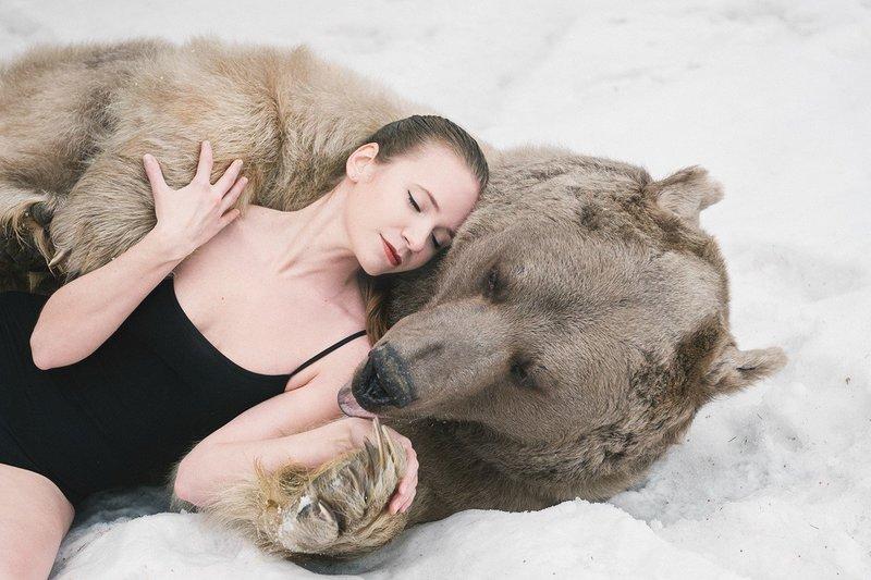 Медведь по сонникам