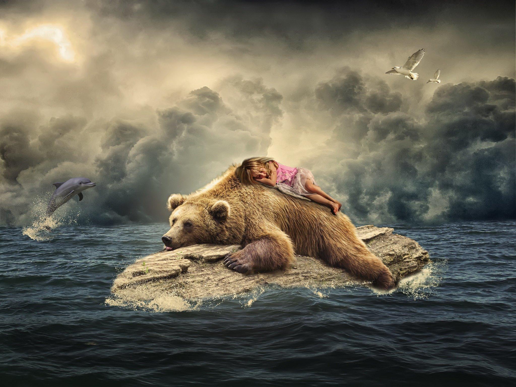 К чему снится медведь женщине сонник ванги
