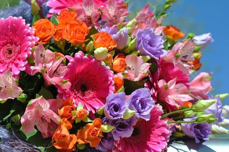Оттенок цветов во сне