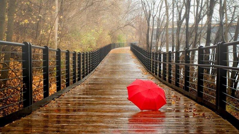Зонт по Менегетти