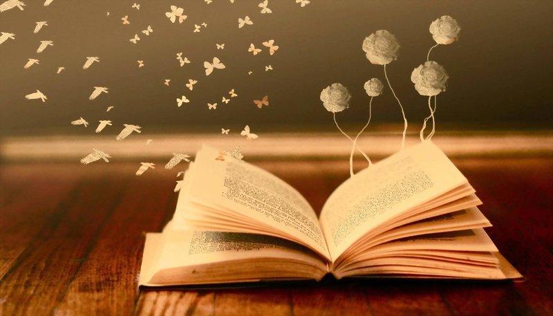 Содержание книги во сне