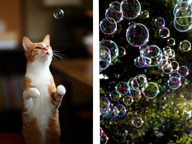 Лучшие рецепты создания мыльных пузырей своими руками