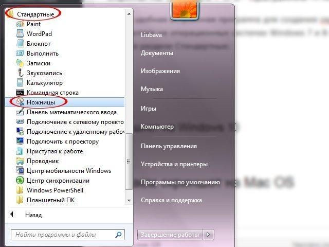 Как сделать скрин на ноутбуке: советы для Windows и Mac OS