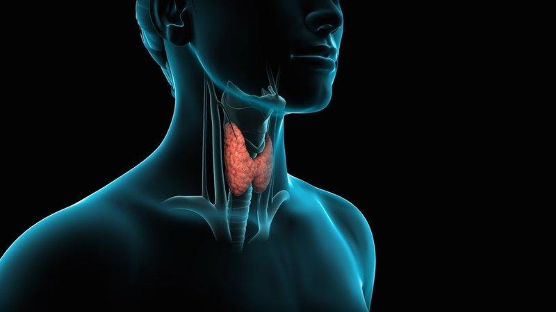 заговорить щитовидную железу