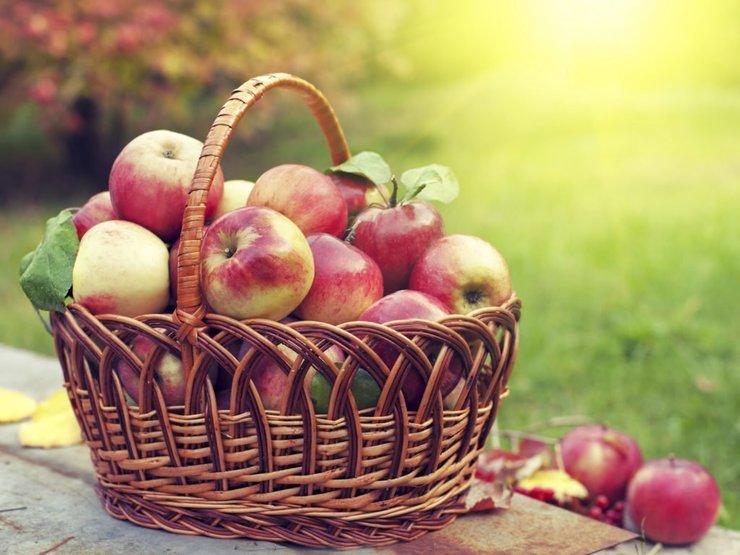 Молитвы на Яблочный Спас
