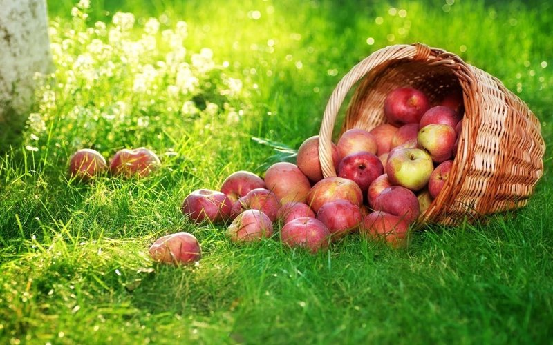 Молитвы на Спас Яблочный