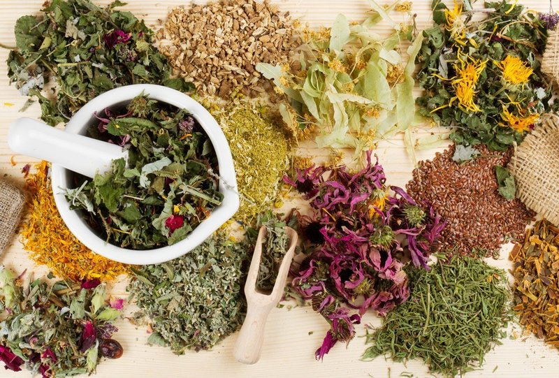 Лечебные травы для приготовления масок для волос от перхоти