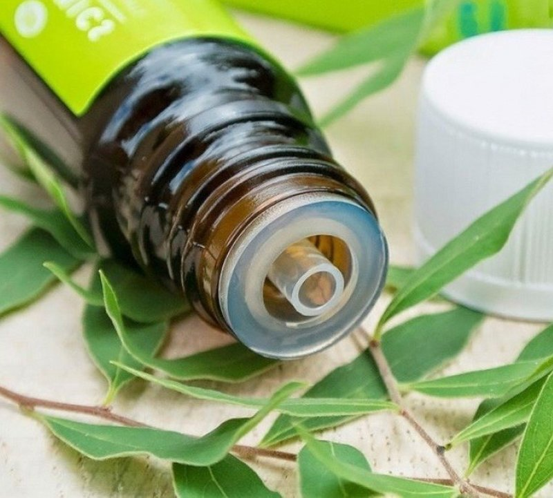 Масло чайного дерева отбеливает зубы без вреда