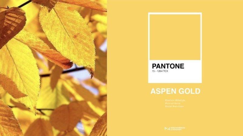 Цвет Aspen Gold