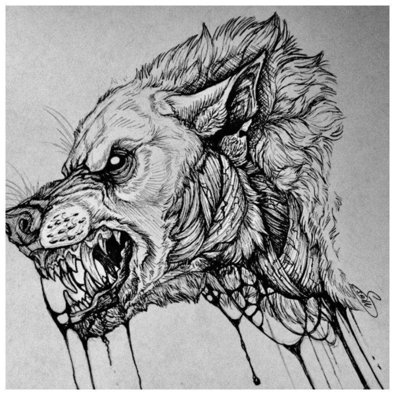 Волчья пасть - эскиз для тату