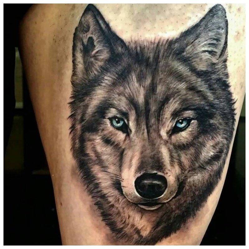 Реалистичный волк - тату на руке