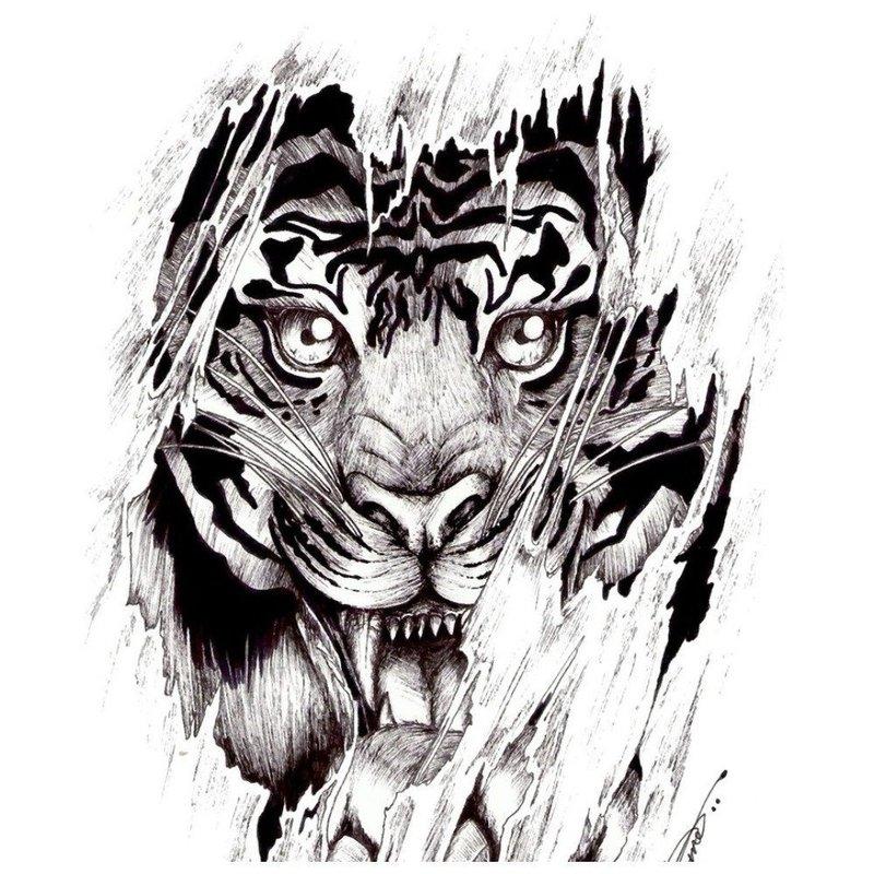 Эскиз для тату с тигром