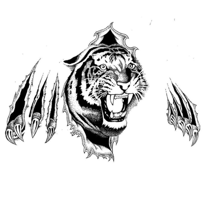 Тигр в 3Д с следами от когтей