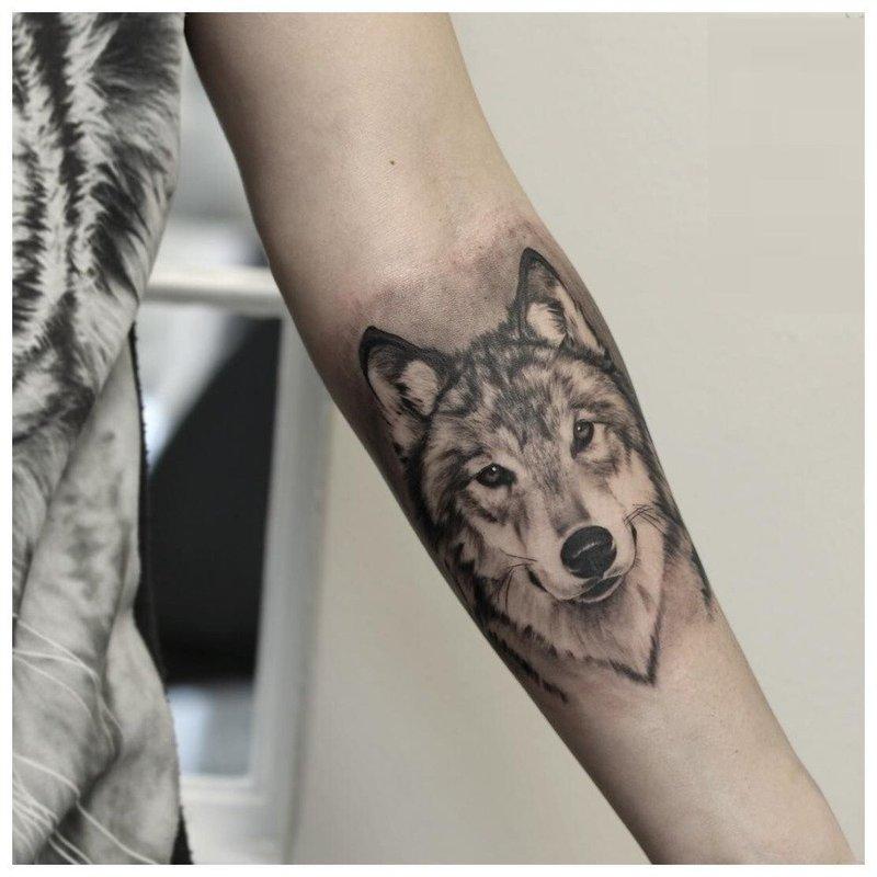 Взгляд волка - тату на руке