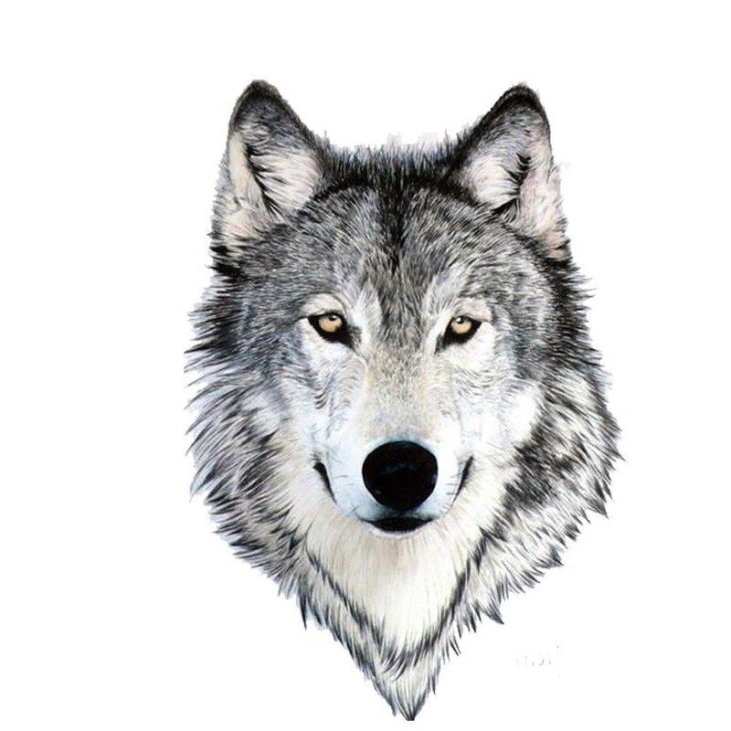 Красивый волк - эскиз для тату