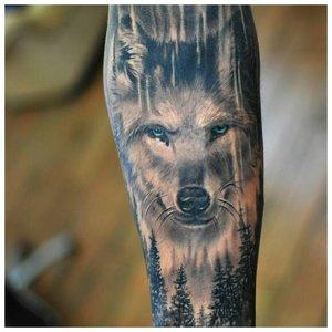 Суровый взгляд волка - тату у мужчины на руке