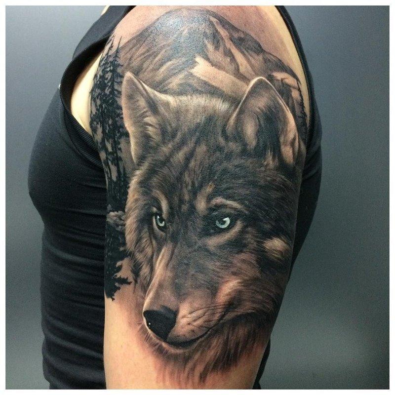 Взгляд волка - тату мужчине на плечо