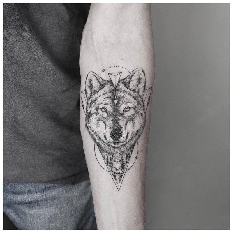 Тату волка на руку мужчине