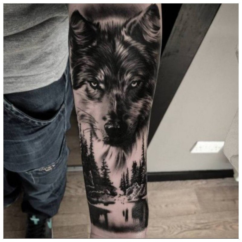 Волчья морда - тату на руке