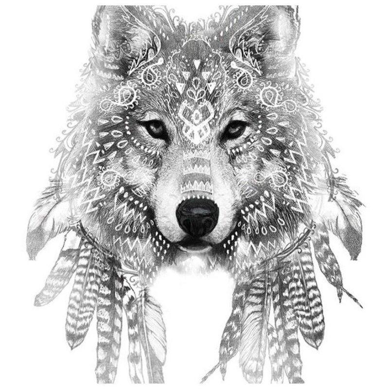 Красивый мудрый волк