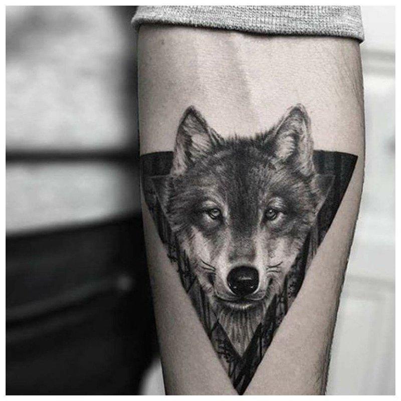 Взгляд волка - тату мужчине на руку