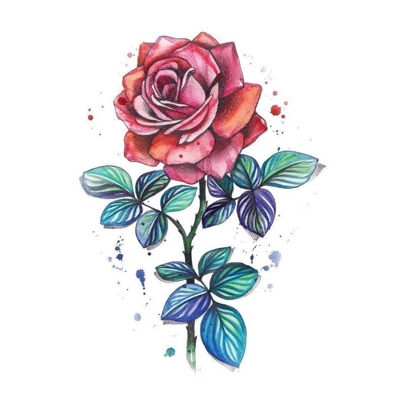 """Цветной эскиз """"Красная роза"""""""
