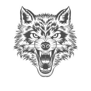 Разъяренный волк - эскиз для тату