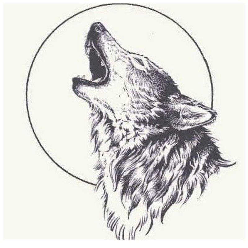 Волк воет на луну - эскиз для тату
