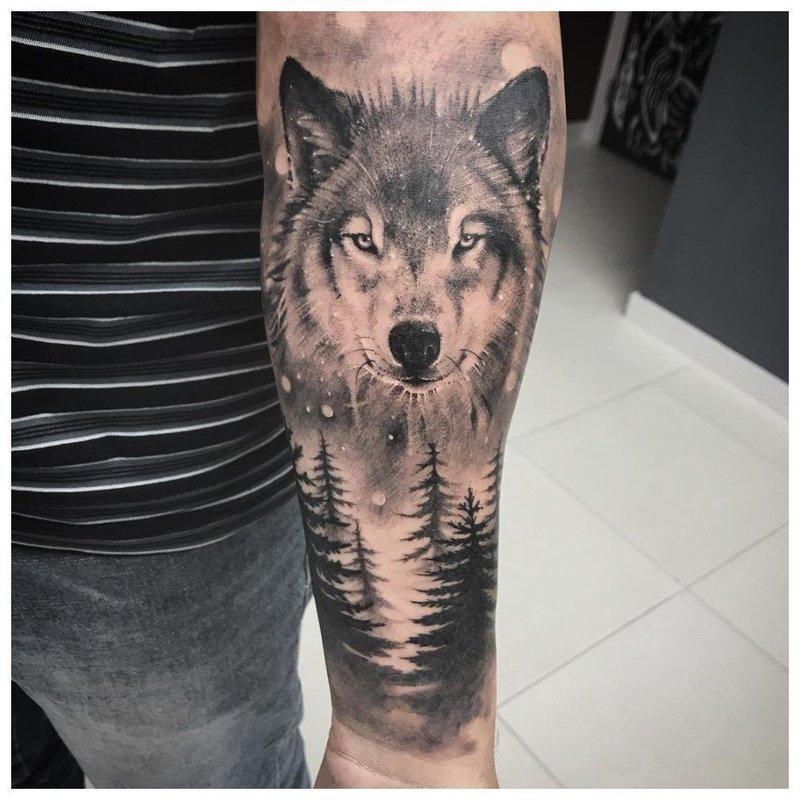 Волк в лесу - тату у мужчины на руке