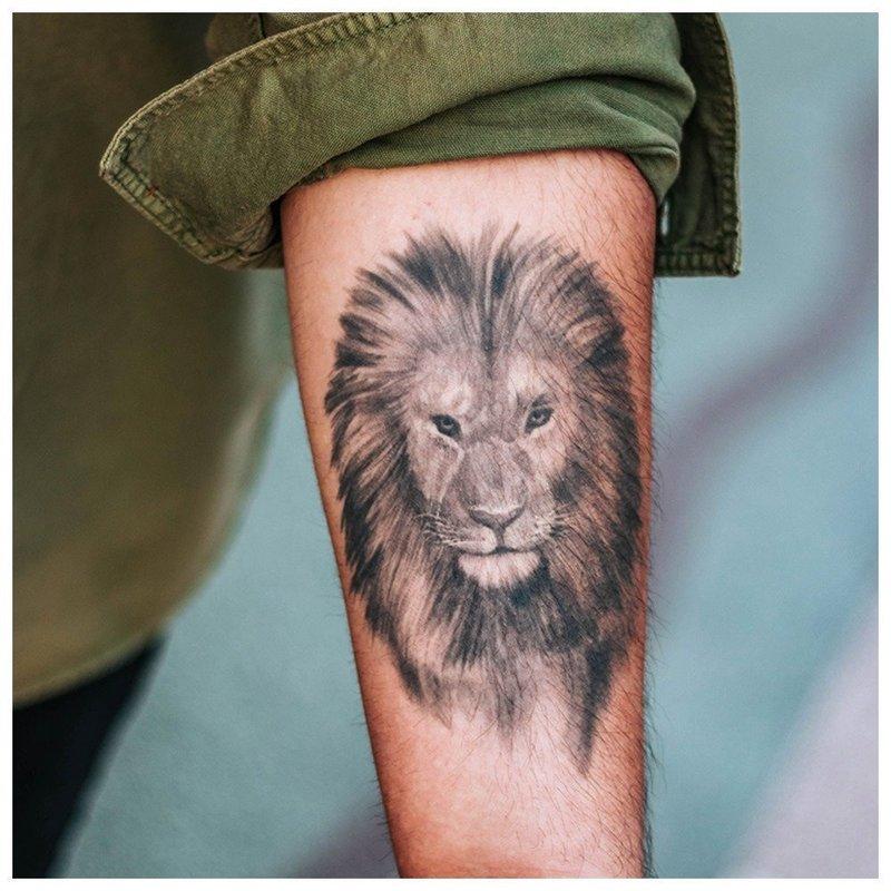 Голова льва - тату мужчинам