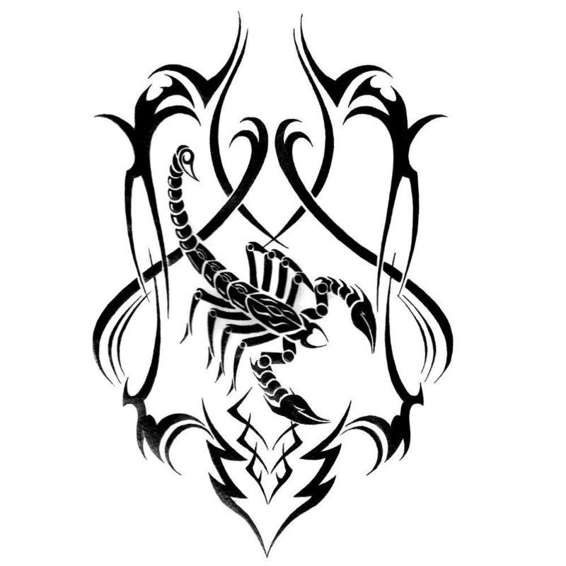 """Эскиз для тату """"Скорпион"""""""
