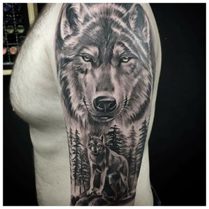 Реалистичный волк - тату на плече