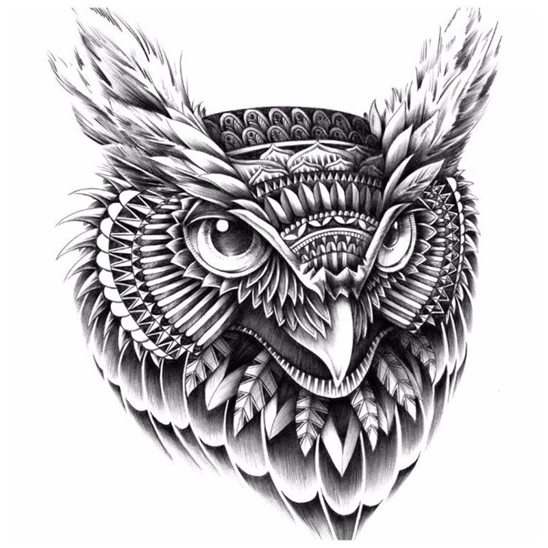 Эскиз птицы для тату