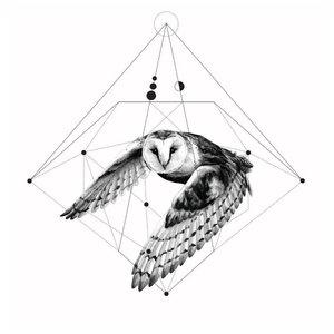 Эскиз тату совы с геометрией