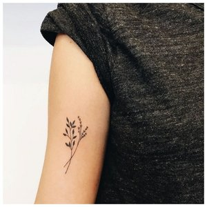 Цветы в стиле минимализм