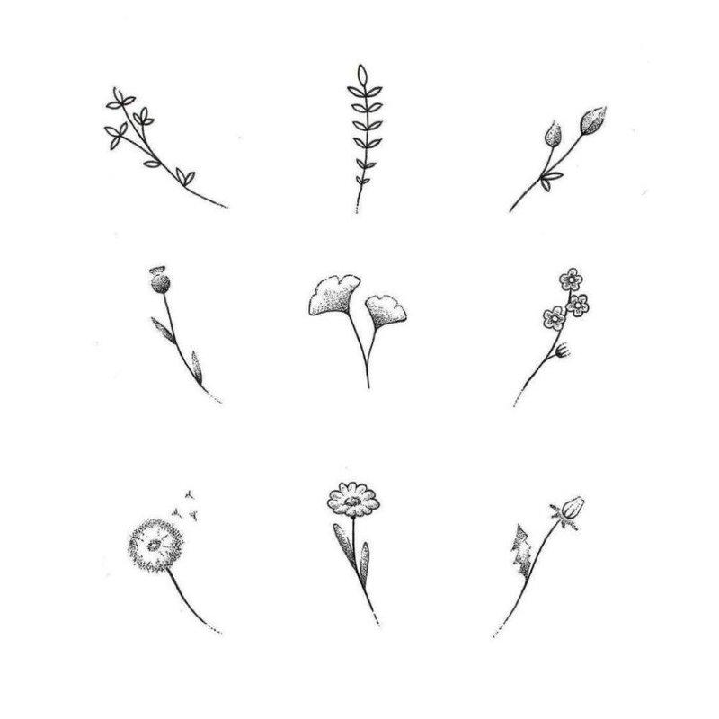 Эскизы цветов для тату