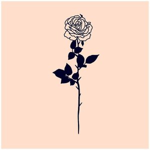 Красивая роза эскиз для тату