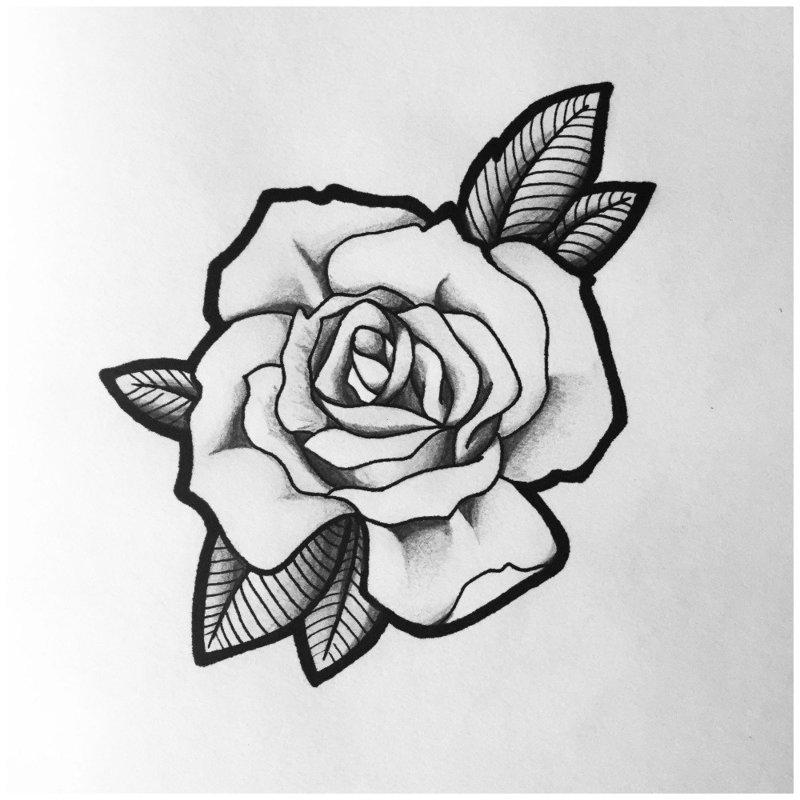Роза эскиз для тату