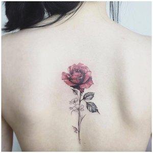 Тату роза на спине у девушки