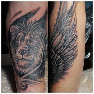 Тату льва с крылом